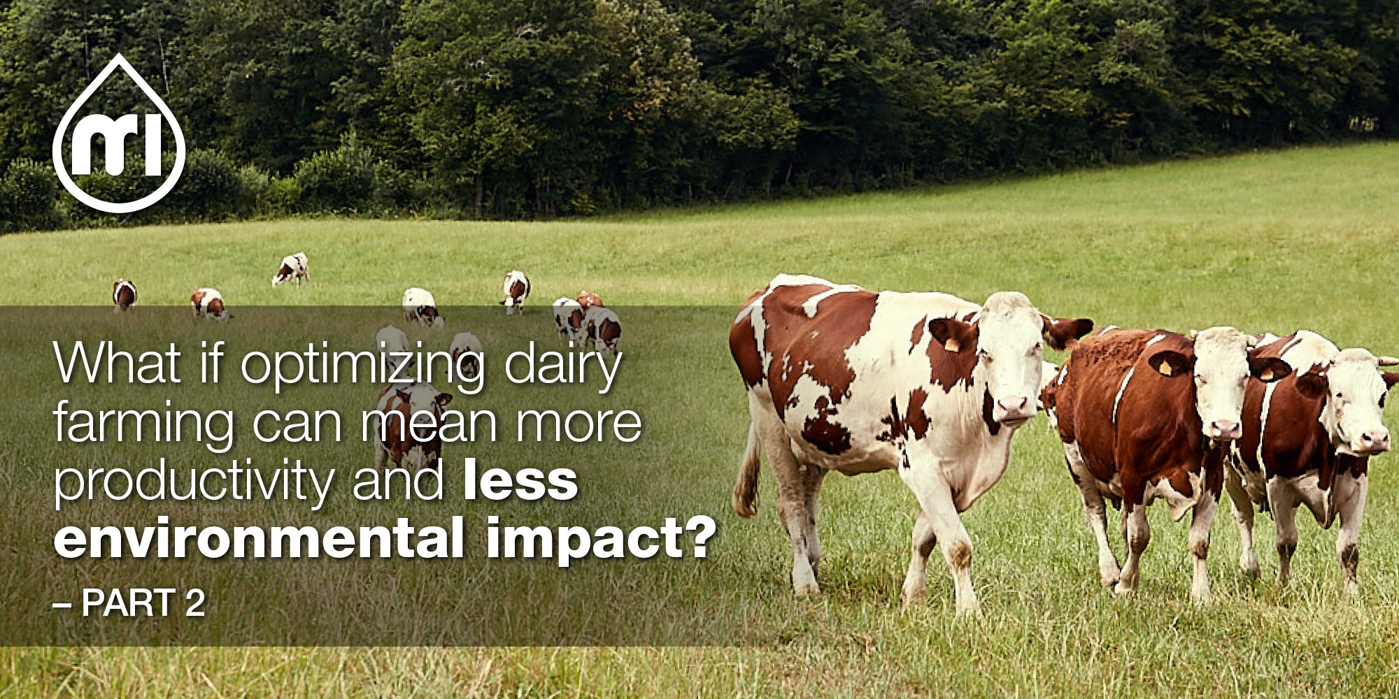 What if optimizing dairy farming can mean more productivity and less environmental impact? - Part 2